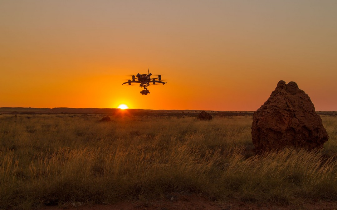 Working in the Pilbara and aerial inspections.